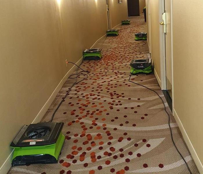 Seven air movers on a carpet hallway floor.