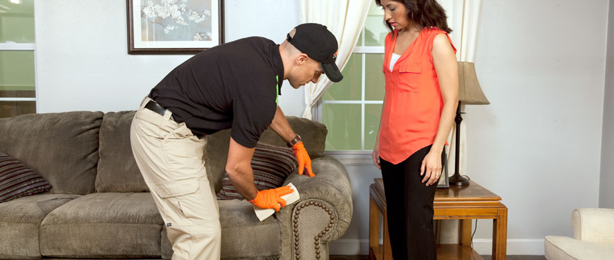 Affton, MO carpet upholstery cleaning
