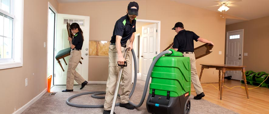 Affton, MO cleaning services