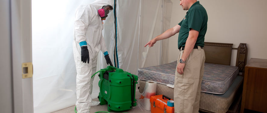 Affton, MO mold removal process